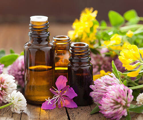 Essential-Oils-Health-Hernando-County