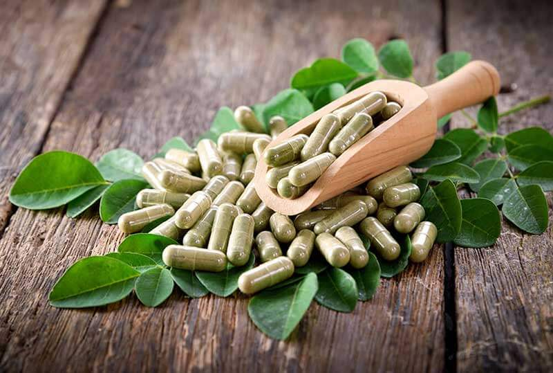 Moringa – The Tree of Life