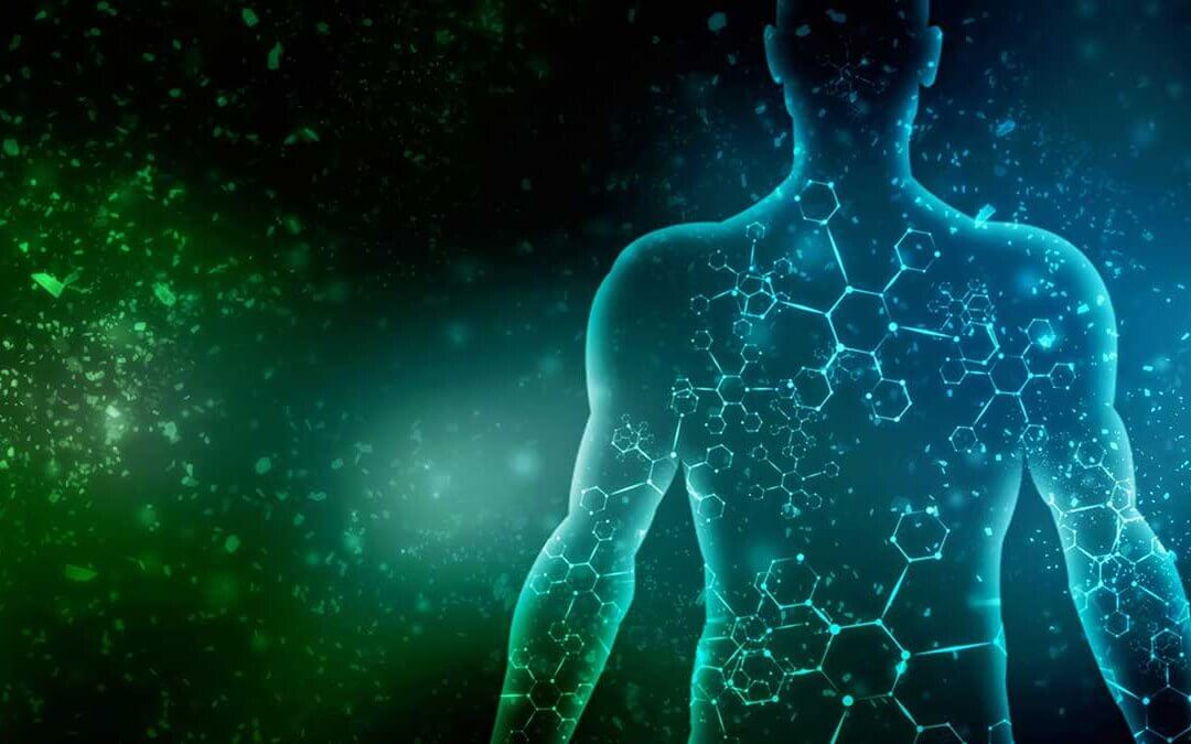 Avert Disease: Re-Balance the Imbalance