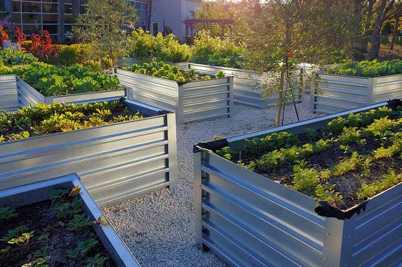 community garden raised beds