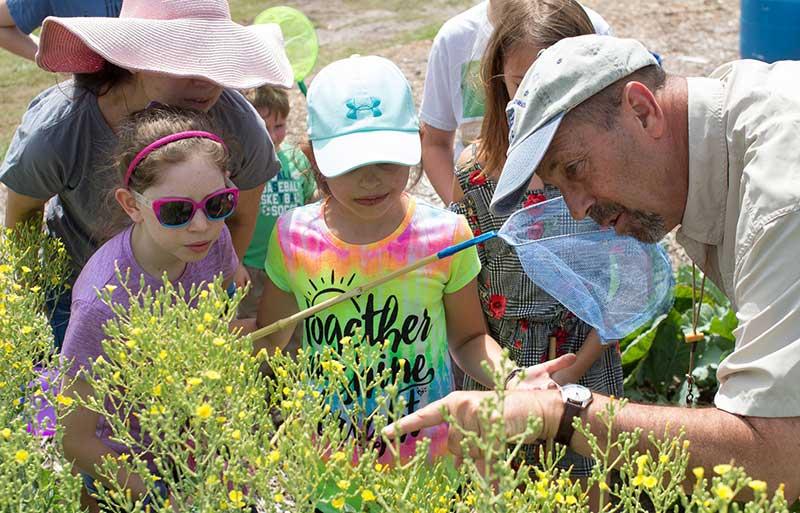 teaching kids gardening